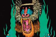 Album Review – Hiatus Kaiyote