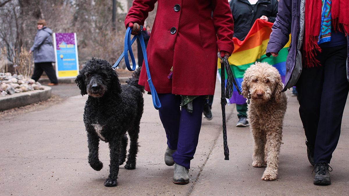 News-Christina-Varvis-Pride-Parade-18