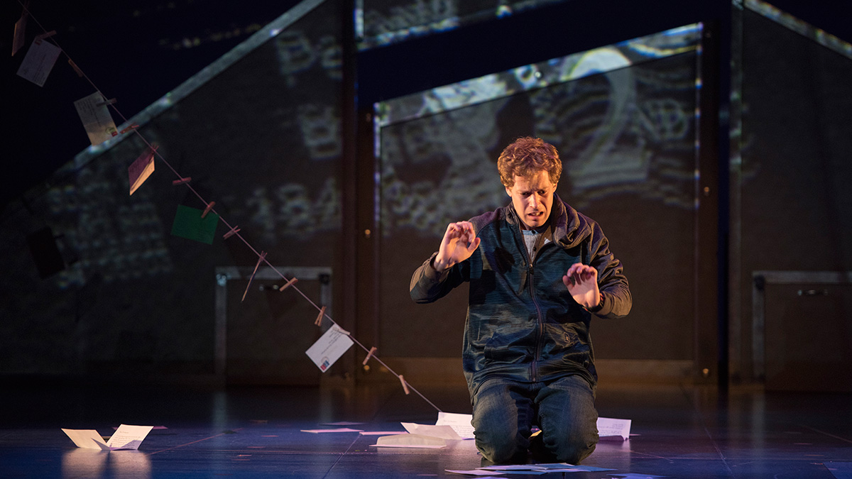 curious incident of the dog in the nighttime essays Novel review – the curious incident of the dog in the night time christopher boone is different from normal kids his age rather, he is special.