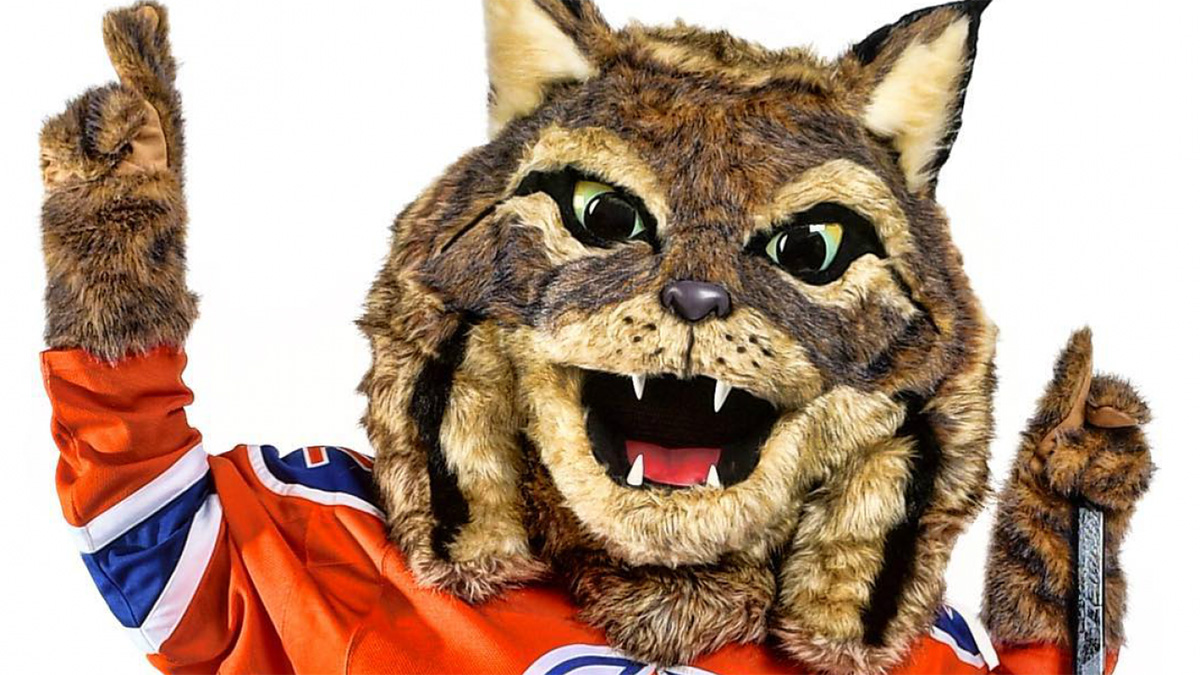 Oilers fans may still accept Hunter the Lynx, but it's going to take time