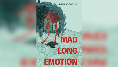 Photo of Book Review: Mad Long Emotion