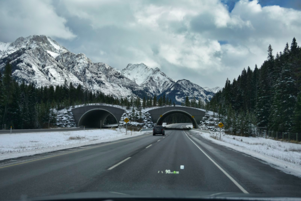 Highway to Banff